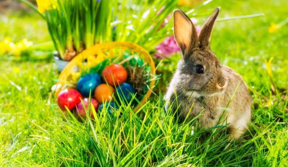 Húsvéti wellness